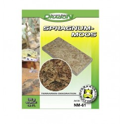 Musgo sphagnum natural