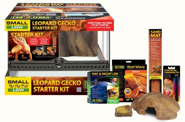 kit inicio gecko leopardo.jpg
